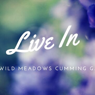 Wild Meadows Homes In Forsyth County Georgia